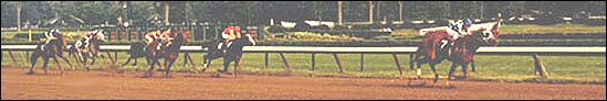 August 26, 1972, $75,000 Hopeful Stakes, Saratoga