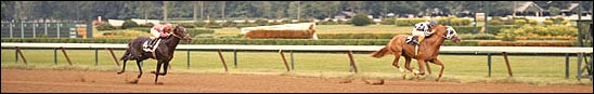 Aug. 16, 1972, $25,000 Sanford Stakes, Saratoga